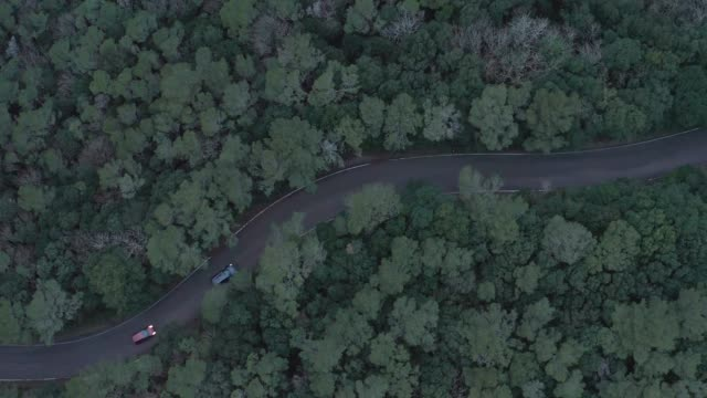 aerial view of cars traveling on a country road - strada tortuosa video stock e b–roll
