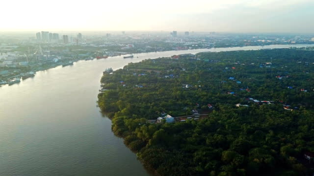 aerial view of chao phraya river. rural area and agricultural area. houses in village and trees in forest in bangkok city, thailand - fiume chao phraya video stock e b–roll