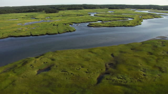 Aerial view of coastline, river, marsh grass. video