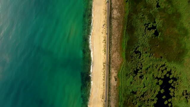 4k luftbild der küste - algen stock-videos und b-roll-filmmaterial