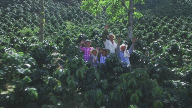 aerial view of colombian family waiving good bye - coffee farmer video stock e b–roll