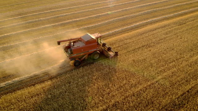 Aerial view of combine harvester is in field with full hopper and pushes auger to unload grain