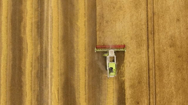 Aerial view of combine harvester video