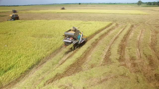 vidéos et rushes de vue aérienne de combiner sur le champ de récolte à ayutthaya, thaïlande - équipement agricole