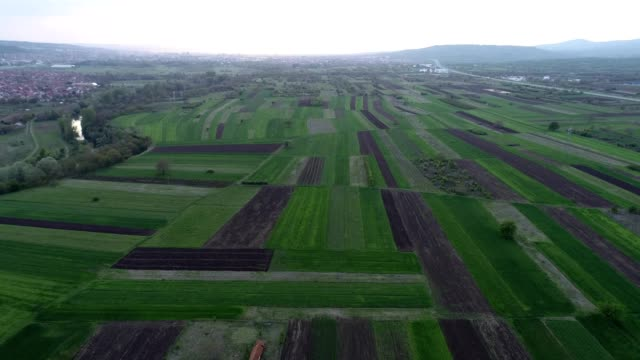 Aerial view of countryside, fields with different agricultural crops