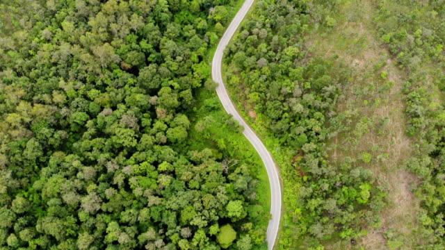 道路上グリーン フォレストと車で山を通る田舎道の空撮。 - 曲線点の映像素材/bロール