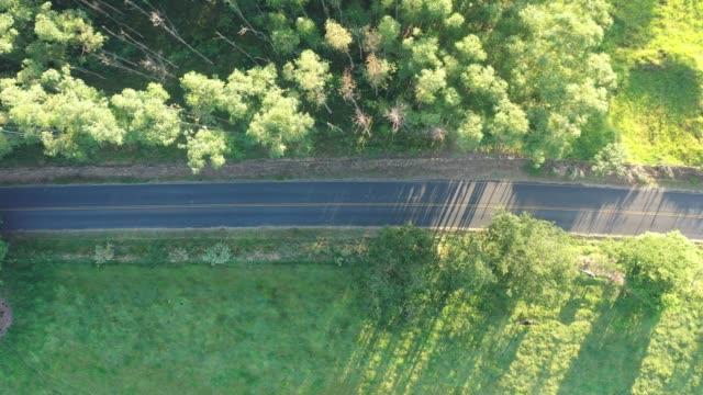 luftaufnahme von einigen personen, die bei sonnenaufgang mit dem fahrrad auf der autobahn unterwegs sind. tolle landschaft. - rustikal stock-videos und b-roll-filmmaterial