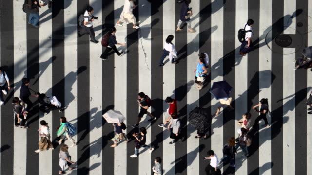vídeos de stock, filmes e b-roll de vista aérea do crossroad - contrastes