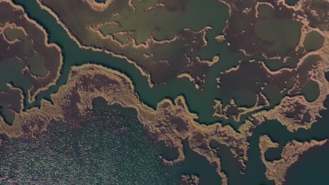 aerial view of dalyan delta and iztuzu beach, mugla - spektakularny krajobraz filmów i materiałów b-roll