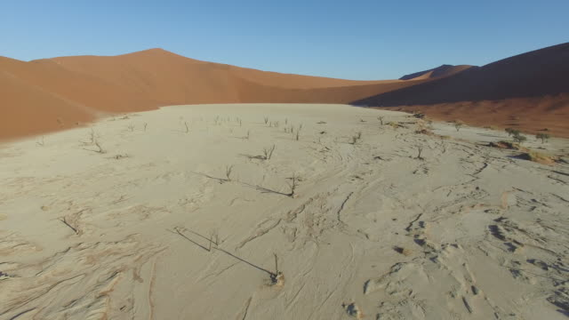 4K Aerial view of Dead vlei  - a white clay pan inside the Namib-Naukluft National Park video