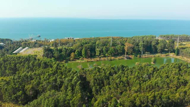 Aerial view of dendrological park with green water lake with blue sea background. Environment and tourism Georgia