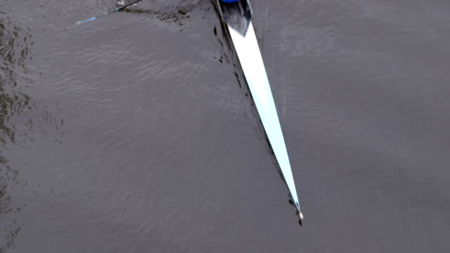 Aerial View of Double Rower video