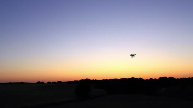 4k, aerial view of drone flying with digital camera over a field with sunset - quadcopter filmów i materiałów b-roll