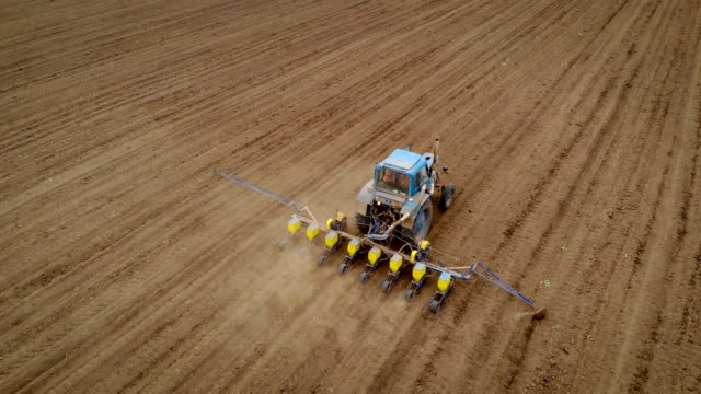 Aerial view of farmer in tractor combine with seeder to sow seeds in ground and rolls wheel in field