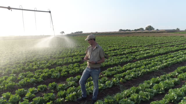 Aerial view of farmer using digital tablet and monitoring centre pivot irrigation video