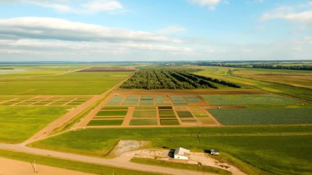 Aerial view of farmland video