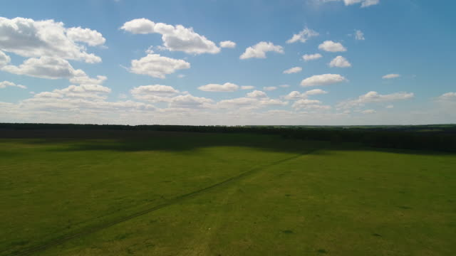 aerial view of field and forest, clouds, farm Siberian landscape video