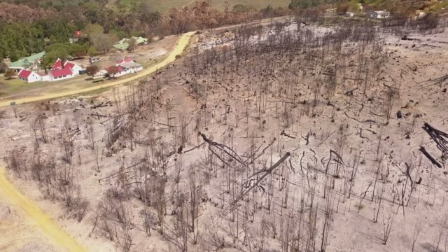 Aerial view of fire damage
