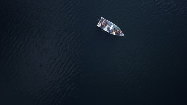 Aerial View of Fishermans Fishing From a Boat on Lake 4K UHD Video of an Aerial View of Fishermans Fishing From a Boat on lake in forest, Quebec, Canada recreational boat stock videos & royalty-free footage