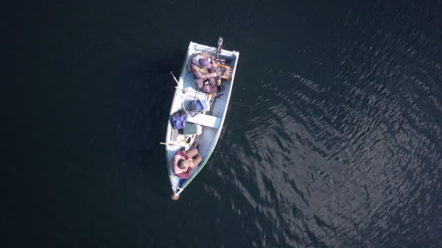 aerial view of fishermans fishing from a boat on lake - łowić ryby filmów i materiałów b-roll