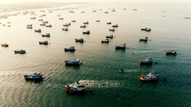 Aerial view of fishermen's boats in the bay video