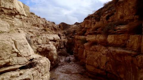 vista aerea dell'alluvione di flash dopo la pioggia nell'alveo del deserto secco - canyon video stock e b–roll
