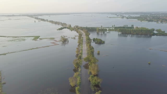 aerial view of flood in ayutthaya province,thailand - monsone video stock e b–roll