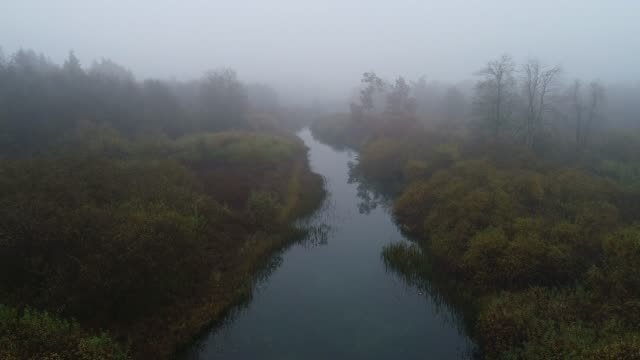 Aerial View of Foggy River Landscape Aerial View of Foggy River Landscape. wetland stock videos & royalty-free footage