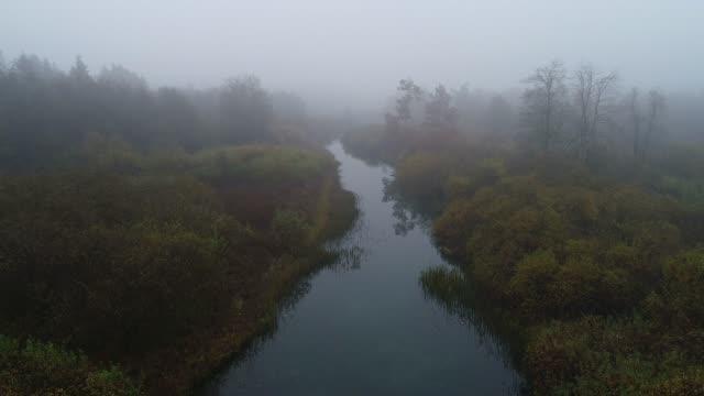 aerial view of foggy river landscape - болото стоковые видео и кадры b-roll
