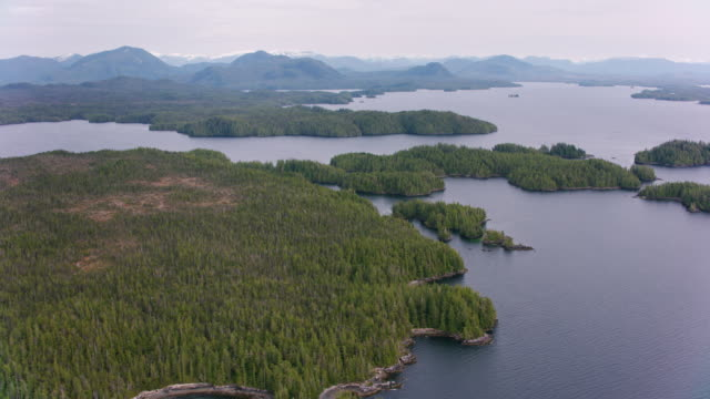 Aerial view of forest and lakes.