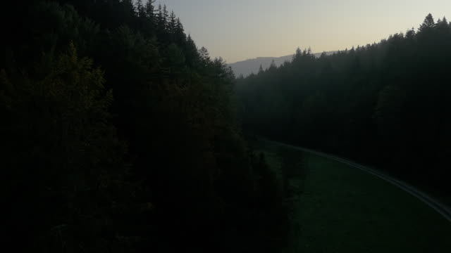 Aerial view of forest Nature views in Germany's Black Forest region country road stock videos & royalty-free footage
