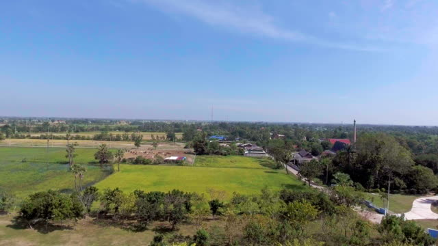 Aerial view of golden Buddha statue among rice paddy in countryside, Flying Backward video
