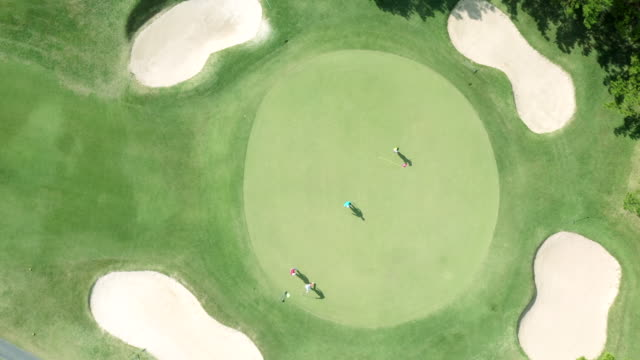 Aerial view of golf course in nature video