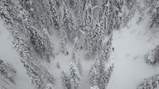 flygfoto över gruppen av skidåkare touring upp berget - vintersport bildbanksvideor och videomaterial från bakom kulisserna