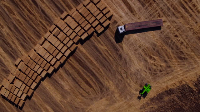 Aerial view of harvest fields with bale, tractor and forklift, video video