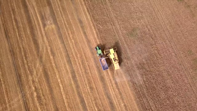 aerial view of harvest - aerial agriculture stock videos & royalty-free footage
