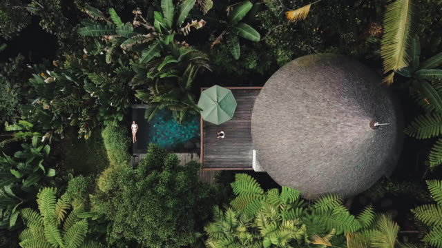 aerial view of holiday weekend relaxing in luxury with tropical jungle villa bali , indonesia - вилла стоковые видео и кадры b-roll