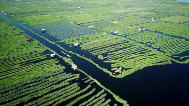 aerial view of inle lake ,boat on river,agriculture tomatos on floating garden myanmar - burma home do filmów i materiałów b-roll