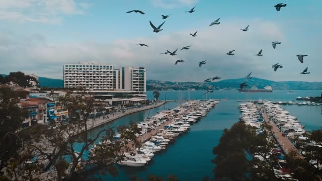 Aerial view of istinye - istanbul video