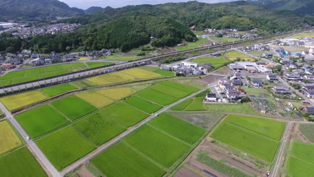 日本的稻田,無人機拍攝的鳥瞰圖 - 非都市風光 個影片檔及 b 捲影像