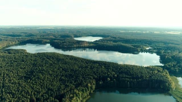 vidéos et rushes de vue aérienne du lac et de la forêt - lac reflection lake
