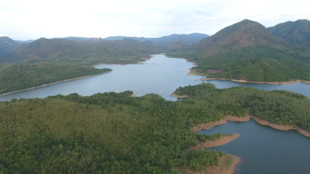 Aerial View of Lake in the Forest