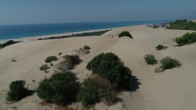 Aerial view of long sandy beach and forest in the 'Patara' region. Antalya/Turkey 11/14/2018