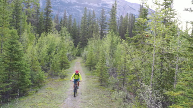 aerial view of male mountain biker, following path at sunrise - andare in mountain bike video stock e b–roll