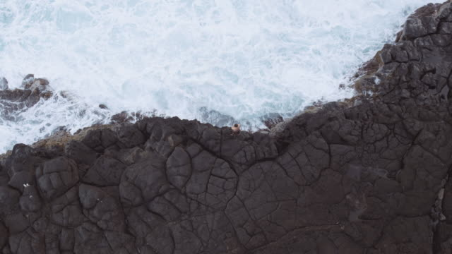 Aerial view of man standing on cliff edge Aerial view of man standing on cliff edge next to ocean cliff jumping stock videos & royalty-free footage