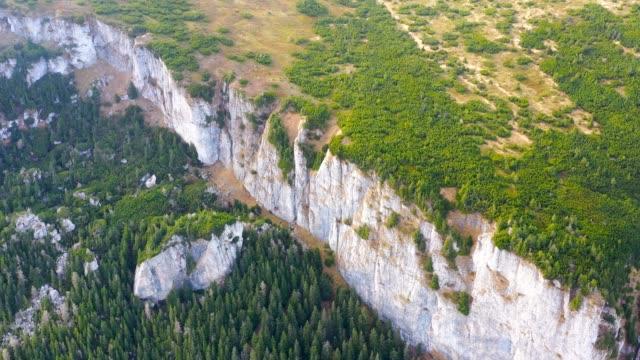 flygbild av fjäll skog och alpin äng - städsegrön växt bildbanksvideor och videomaterial från bakom kulisserna