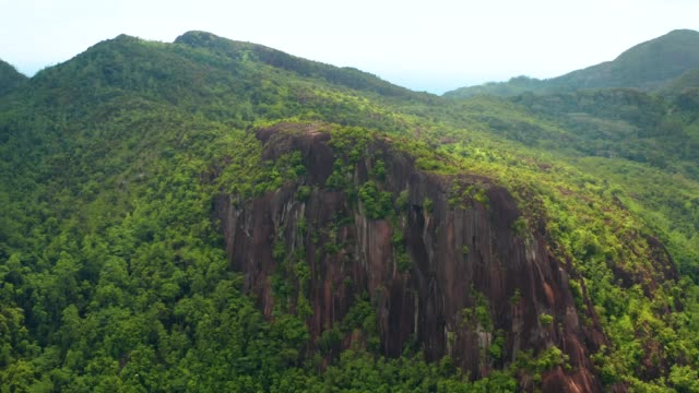 Aerial view of mountain top with rock cliff and tropical forest. Aerial view of stone cliff at Copolia trail on Mahe island, Seychelles. Drone shot of tropical scenery, Earth Day concept. earth day stock videos & royalty-free footage