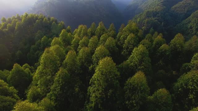 vidéos et rushes de vue aérienne de montagne vallée, 4k - chaîne de montagnes