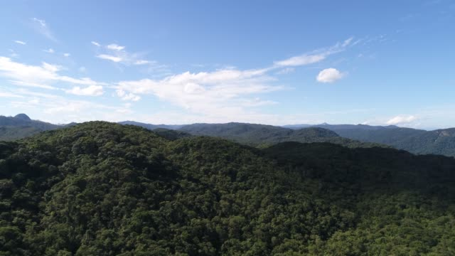Aerial View of Mountains in Rainforest video