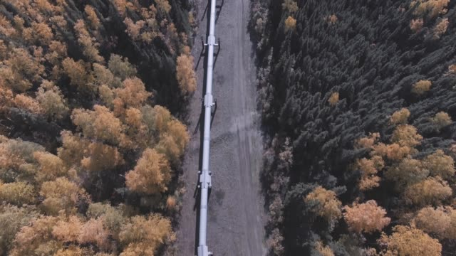 Aerial view of oil pipeline in Alaska, USA Aerial view of oil pipeline in Alaska, USA oil industry stock videos & royalty-free footage